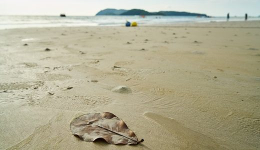 マレーシアの海は素朴でいい