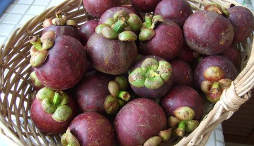 甘くてジューシーで美味しい「マンゴスチン」はまさに果物の女王!