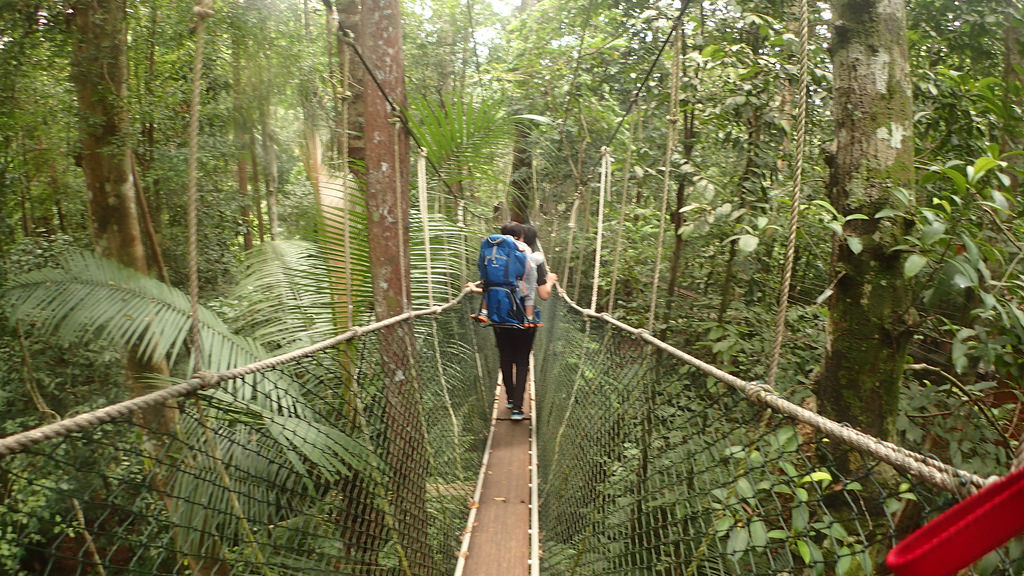 パハン州のタマンネガラ