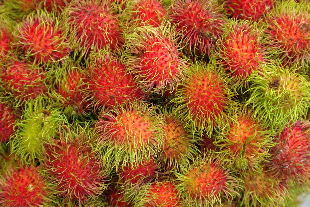 マレーシアを代表するフルーツランブータン