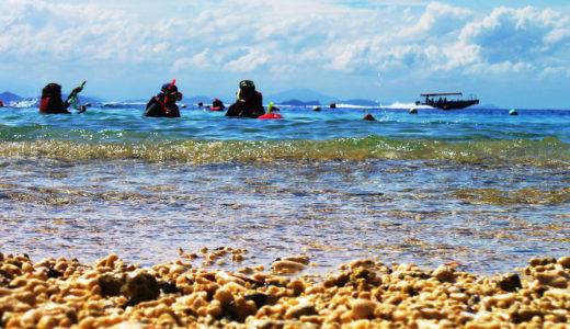 【 観光 】ボルネオ島サバ州、定番じゃないマレーシア観光で差別化を図る