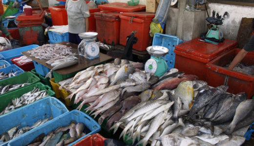 新鮮な魚を買うなら断然海辺の露店がオススメ