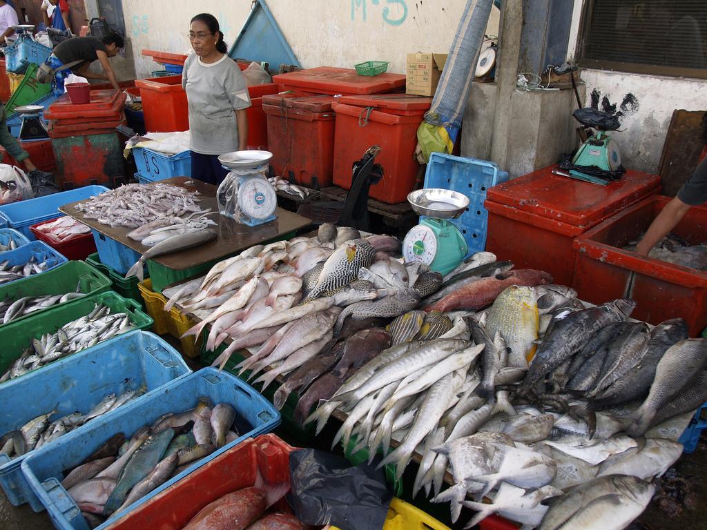 マレーシアの魚売り場