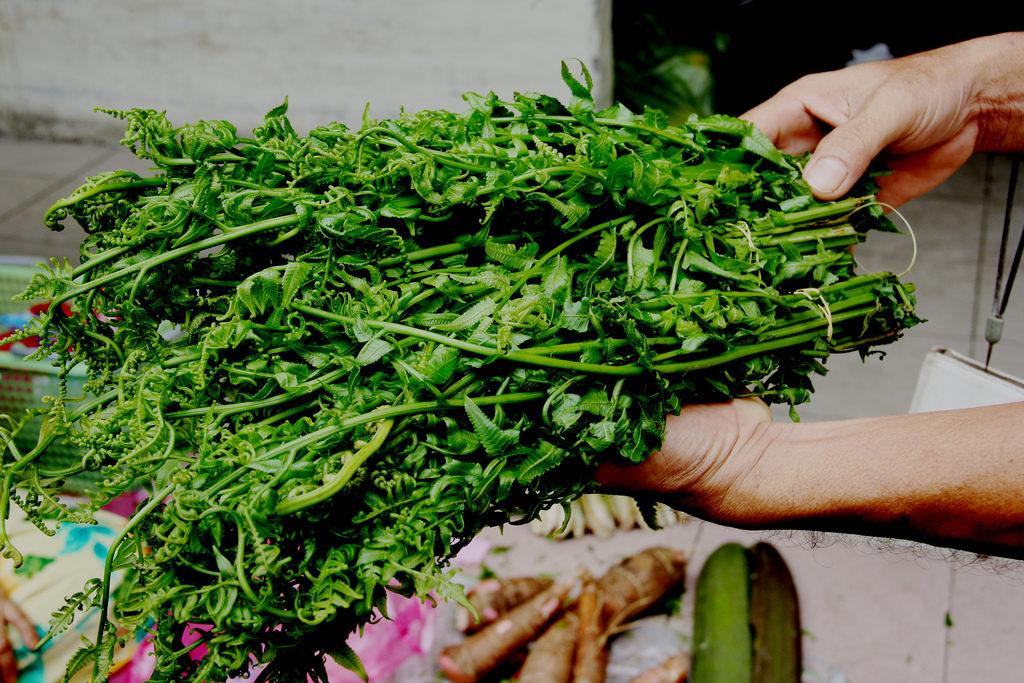 マレーシア野菜パクー