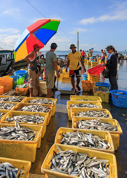 海辺で魚を買う