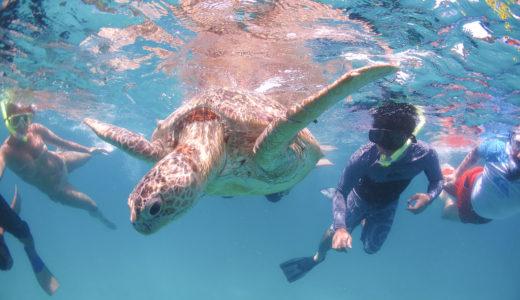 マレーシアの秘境?!プルフンティアン島は上級者におすすめの観光スポット