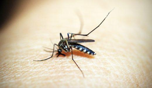 2020/6/26 マレーシアでマラリアの症例が確認される